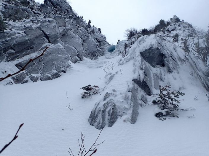 Looking up Parasol Gully