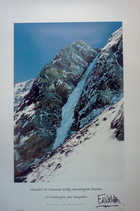 Ed Webster - Pinnacle Gully poster