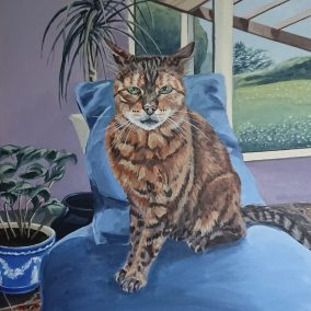 Spike the Bengal Cat