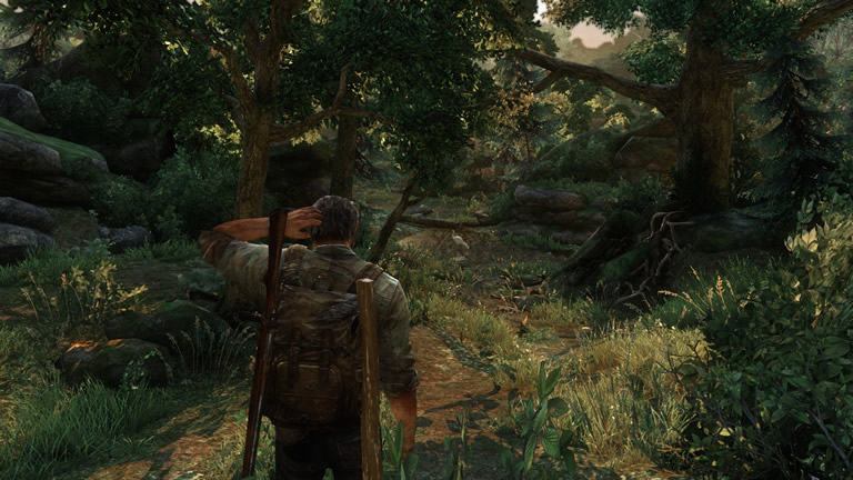 Test - The Last of Us Remastered - graphismes