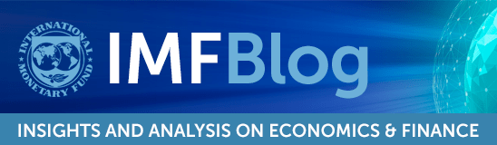 Image result for imf blog LOGO