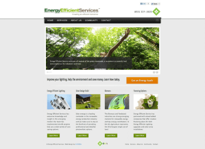 Energy Efficient Lighting Services