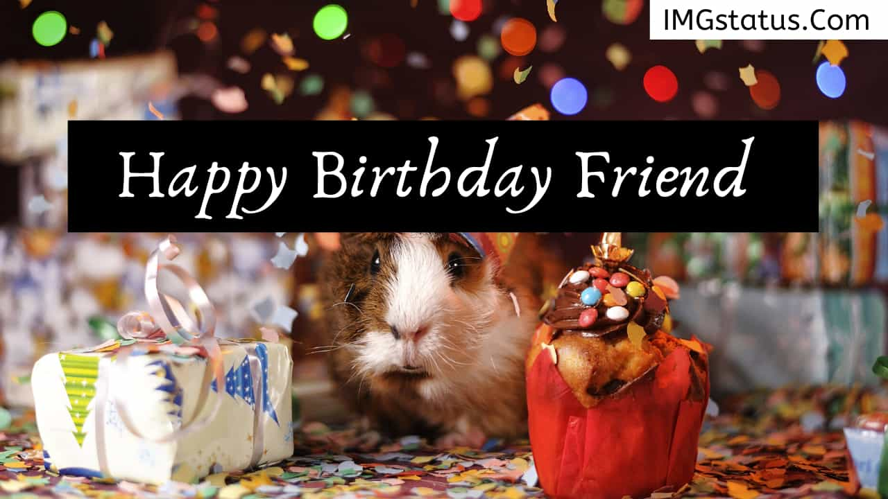 Happy Birthday Wishes & Status in Hindi for Friends