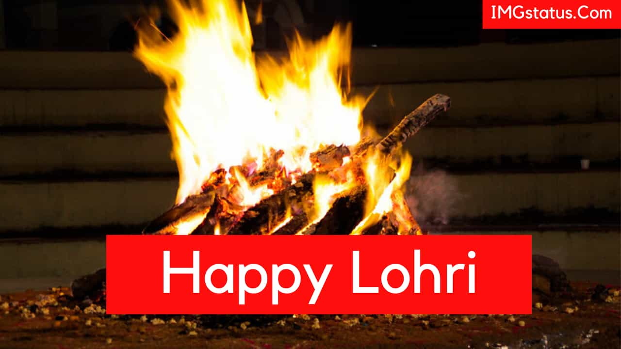Happy Lohri Wishes Status & Messages in ...