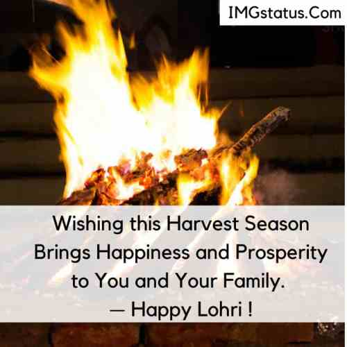 Happy Lohri Wishes in English