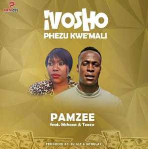 Pamzee Ivosho Phezu Kwemali ft. Mshoza & Tzozo mp3 download