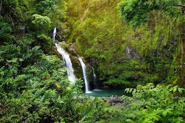 Maui State Park