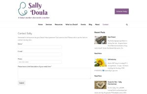 imi web design screenshots of sallydoula.com contact form