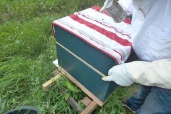 Dekplank naar beneden en de honingkamer afdekken