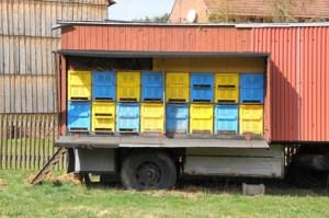 Bienenwagen mit mit Bienenbeuten