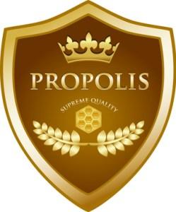 Propolis logo