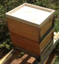 Beute mit Bienenflucht
