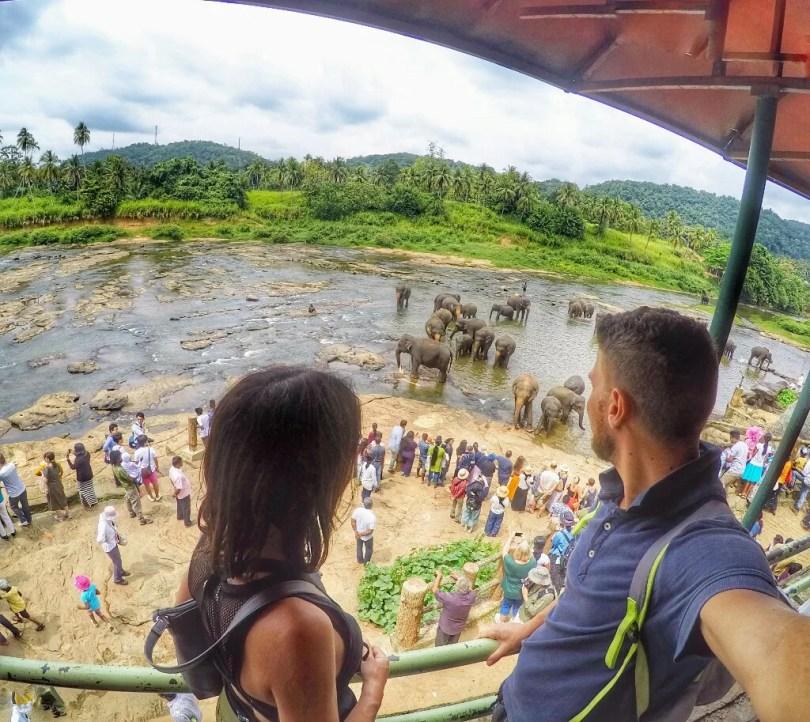 Sri Lanka Trasferimenti ed Escursioni