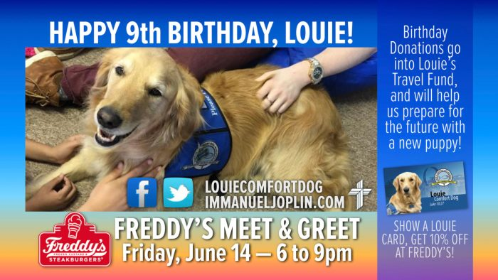 happy birthday louie comfort dog