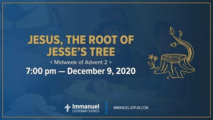 Jesus the Root of Jesse's Tree. Midweek of Advent 2. Immanuel Lutheran Church LCMS. Joplin Missouri.
