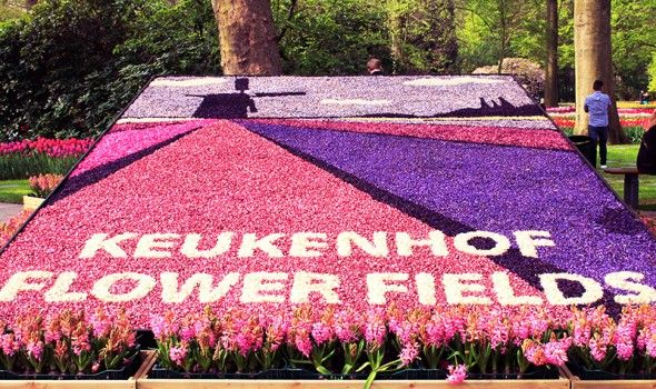 Der Keukenhof in Holland