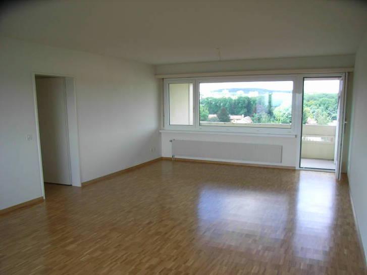 45 Zimmer Wohnung Nachmieter gesucht  8046 Zurich