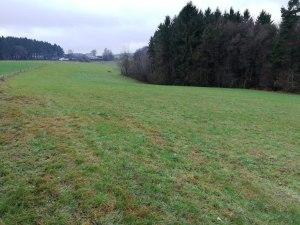 unbebaute Grundstücke Bonn