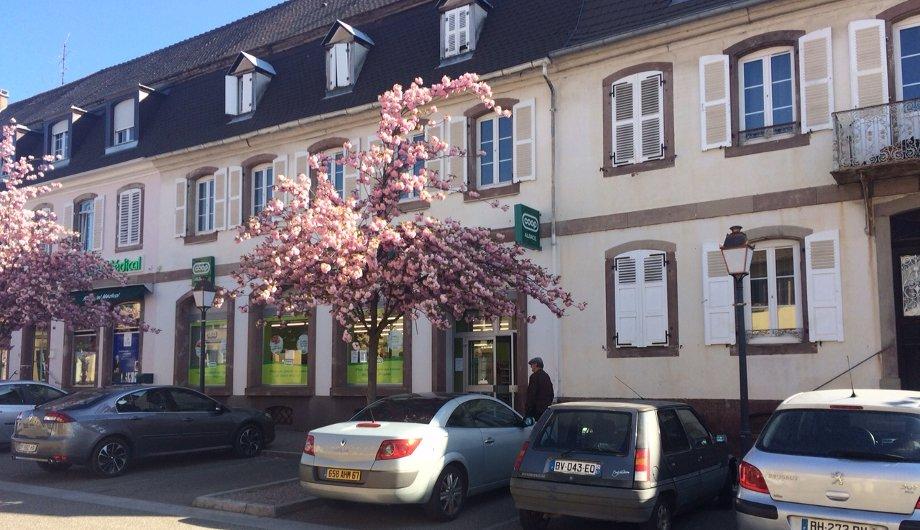 Ventes immobilires  Eric Brenner Immobilier Strasbourg