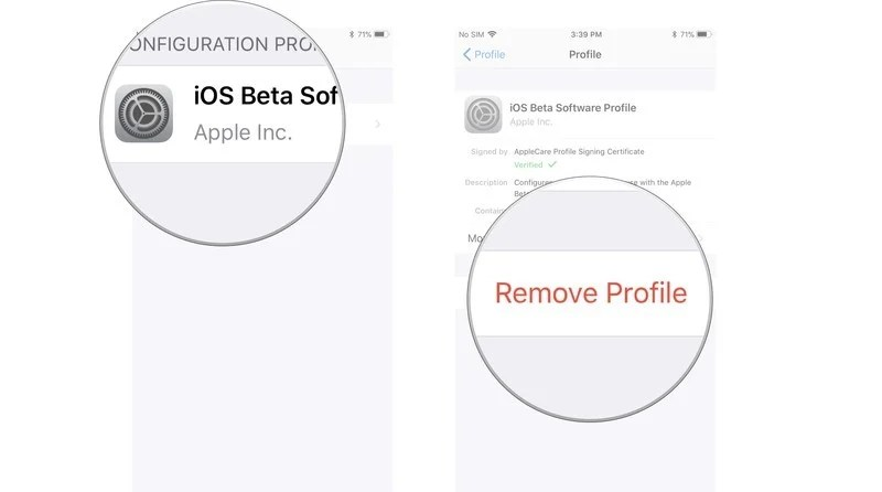 How to update from the iOS 14 beta to the official release
