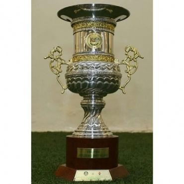 Em 2014, o Palmeiras derrotou a Fiorentina e venceu a Taça Júlio Botelho, criada para homenagear o ídolo alviverde.