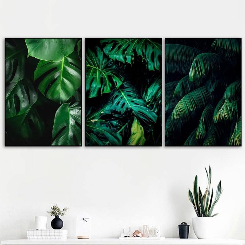 Jungle Pakketilbud