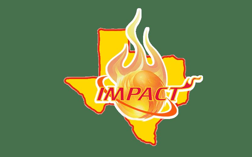 Impact Sportz basketball