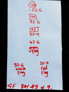 Along the bottom you see my notes, to remind myself where I was standing. Above that the yardages to the first flags. Then to the Green flag. Then the actual measurement to the numbered boards and finally to the 127 boards hanging high on the back nets.