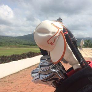 Cobra Forged One Irons - Impact Golf - Latin America's #1 English Language Golf Blog