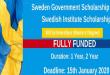 Global Master's Scholarship at Karolinska Institutet in Sweden