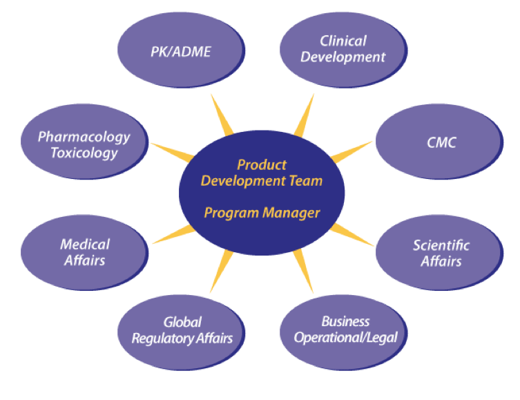 project impact diagram 2000 ford explorer wiring program management pharmaceuticals chart provides experienced professionals