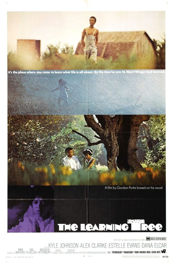 Learning Tree #1 Of 2 Extra Large Movie Poster