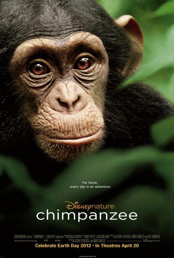 Chimpanzee Extra Large Movie Poster - Imp Awards