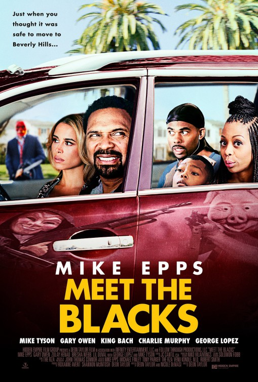 Image result for meet the blacks poster