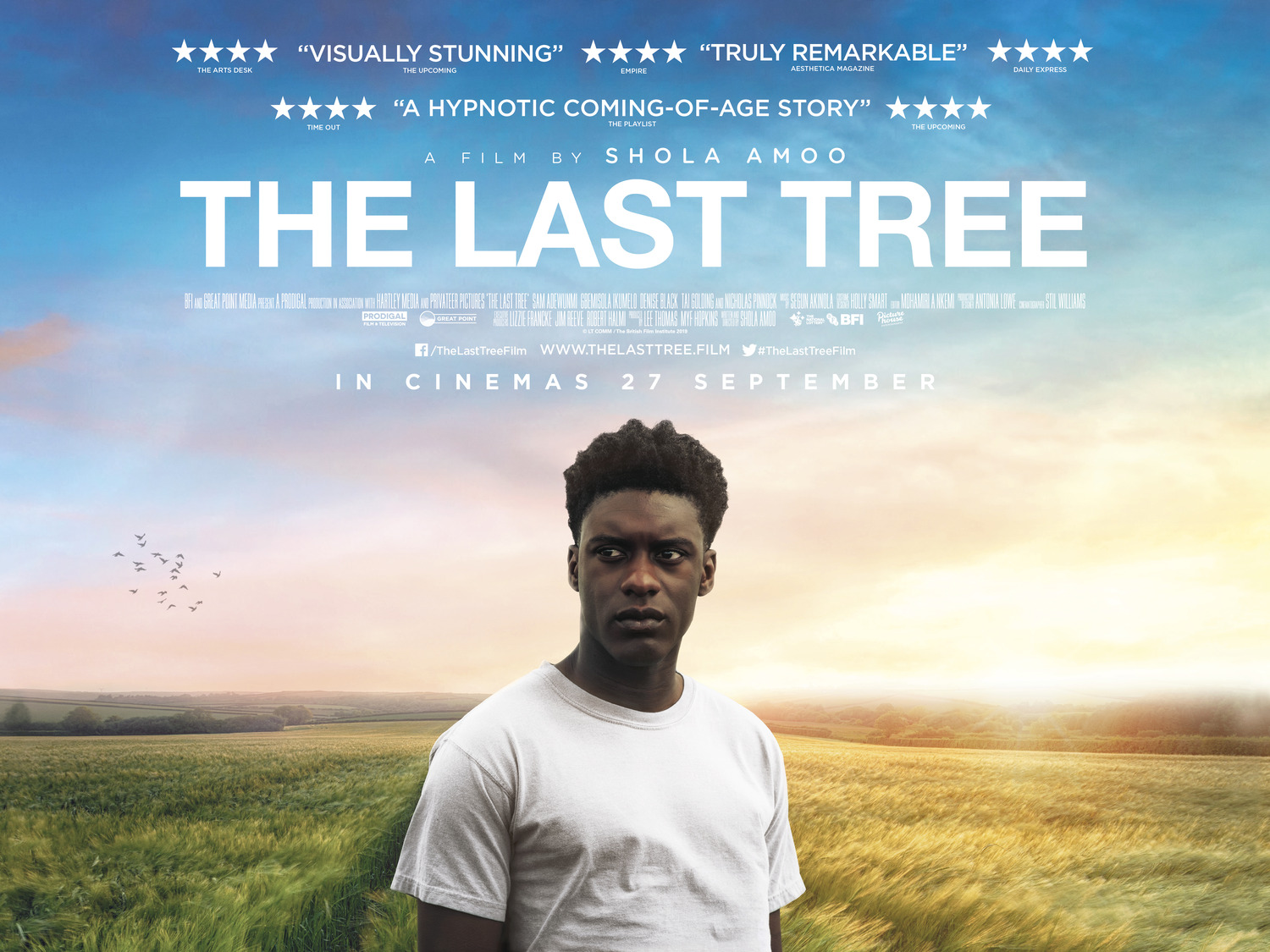 Extra Large Movie Poster Image for The Last Tree