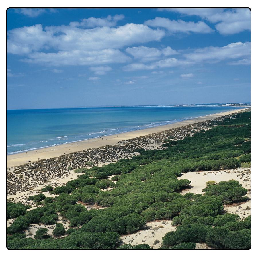 Huelva - Playa de los Enebrales - Punta Umbría / © Ente Spagnolo del Turismo - Turespaña