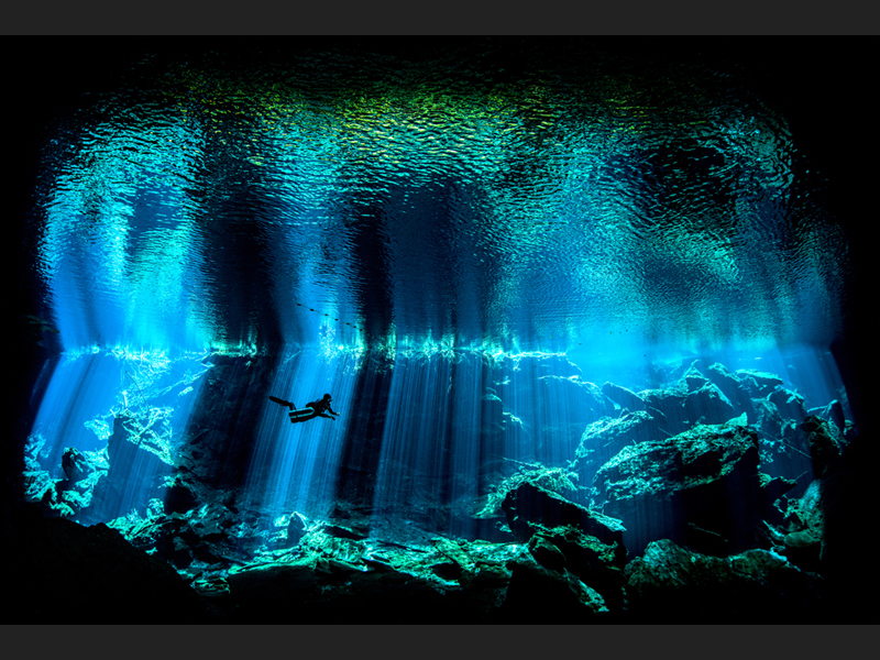 Out of the Blue - British Underwater Photographer of the Year 2017
