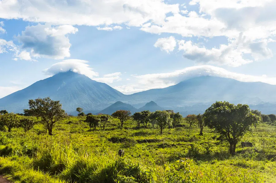 Virunga National Park / © Alamy