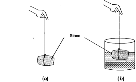 Gravitation NCERT Solutions for Class 9th Science: Chapter