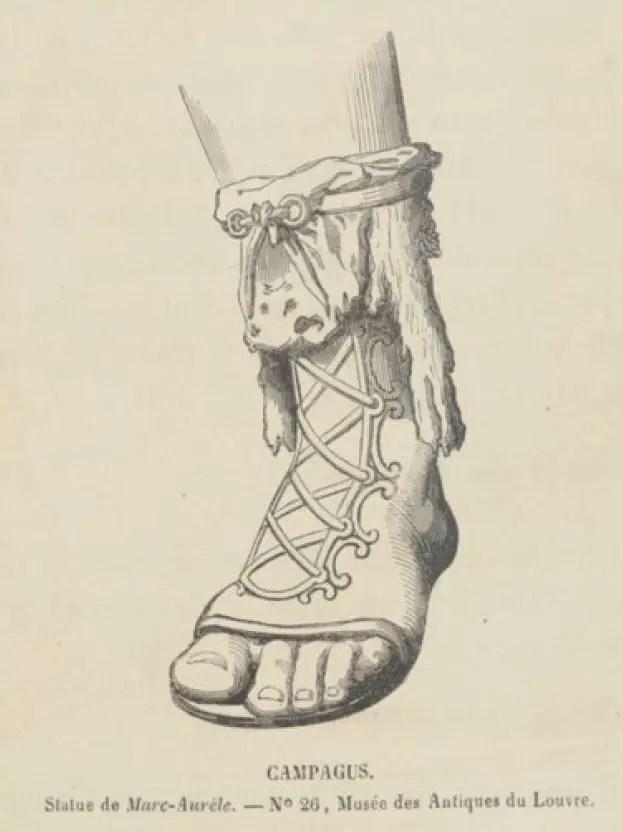 Ilustración de un campagus.