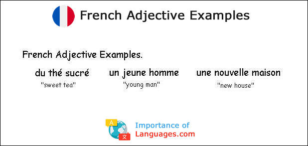 French Adjective Examples