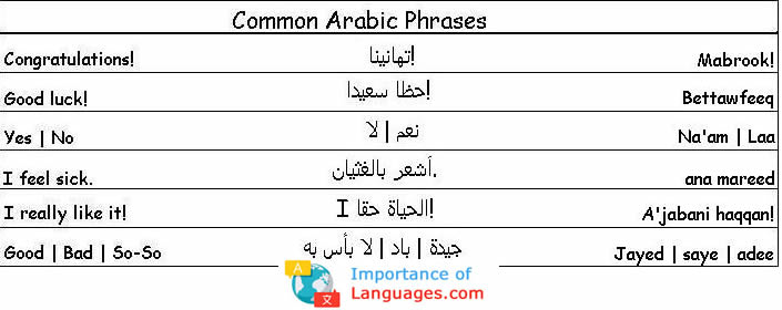 common arabic phases