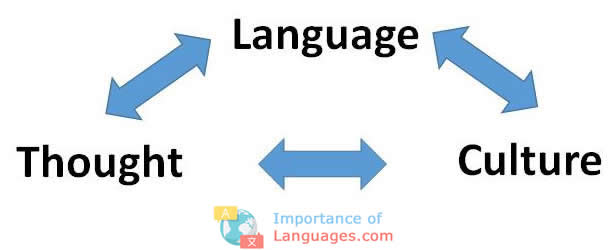 Techniques to learn new languages