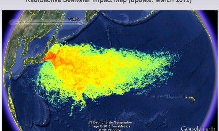 Fukushima: Auswirkungen nun im Ökosystem nachweisbar
