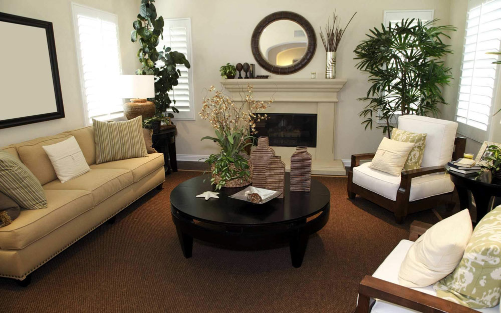 living room plant decor paint color ideas for accent wall decorating the with plants