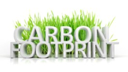 Green grass with Carbon footprint 3D text isolated