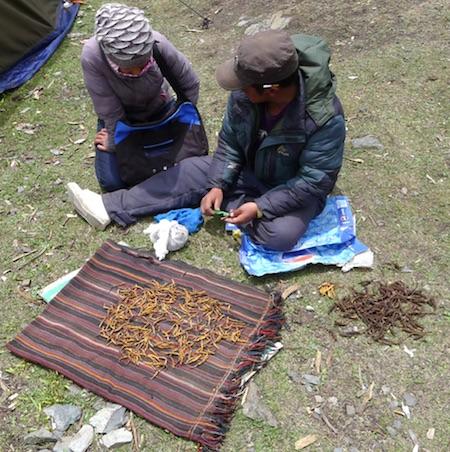 childs-Tibet-photo
