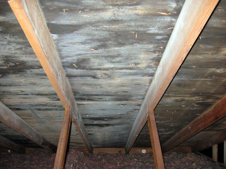 Underside of roof sheathing