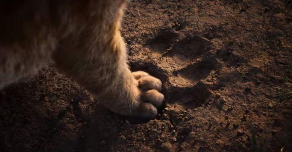 lion king online subtitrat # 39
