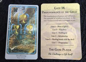 Gate 28 3 of cups
